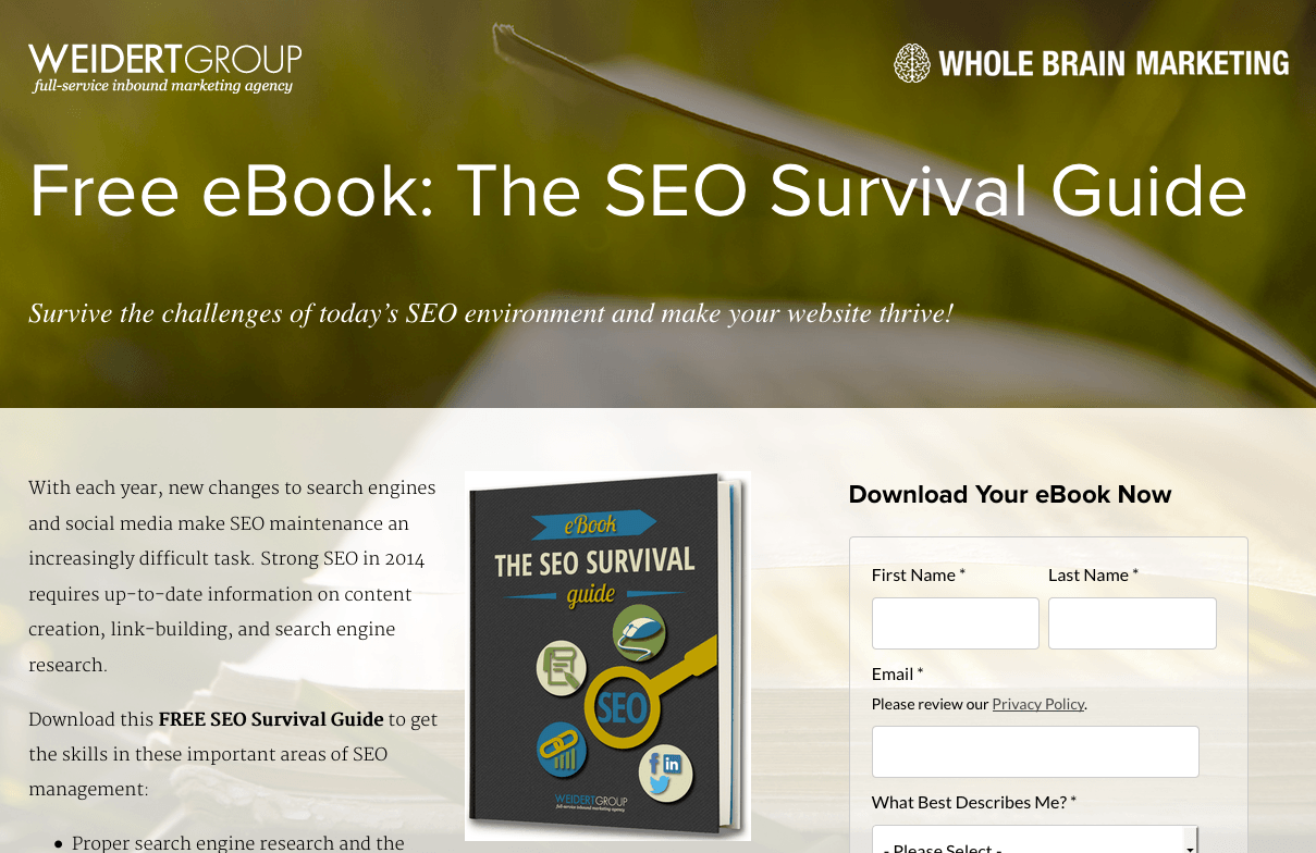 SEO Survivor Book