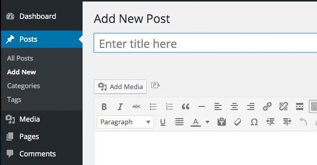 Wordpress Write New Post