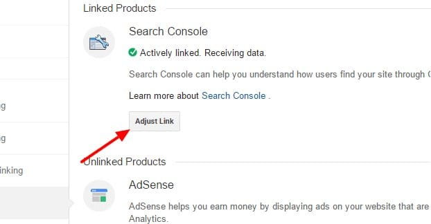 Adjust Link Google Analytics