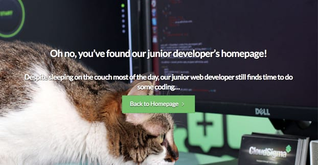 404 Page Example 3