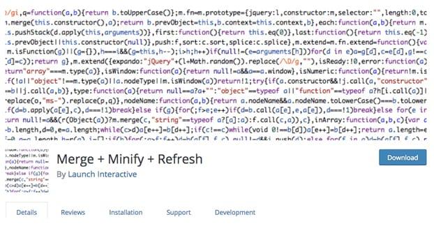 Minify Code WordPress