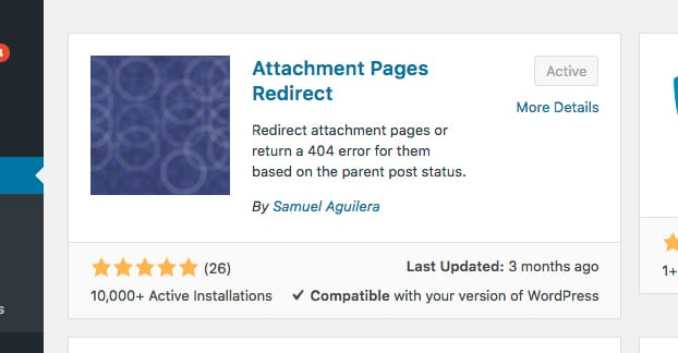 Attachment Pages Redirect