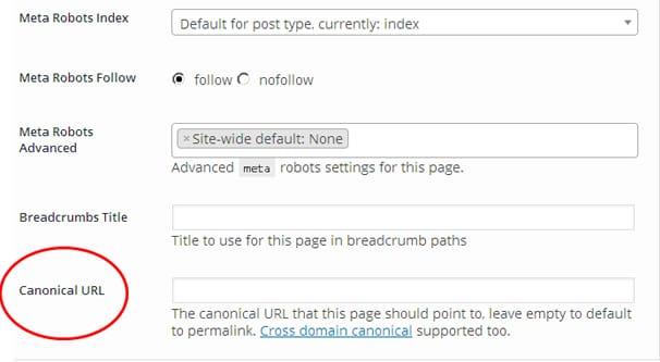 Move WordPress URL Canonical