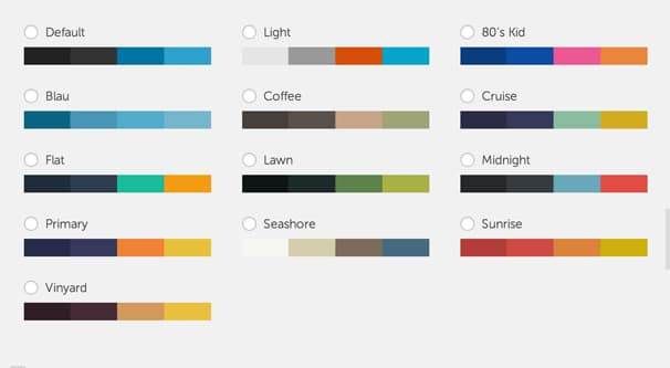 Wordpress Customization Options