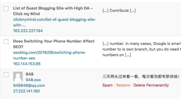 Blog Comment Spam