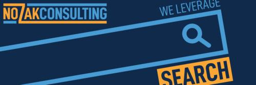 Nozak Consulting Twitter logo