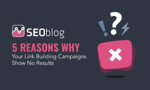 Reasons why link building show no results