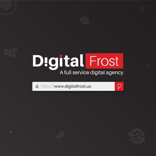 Digital Frost logo