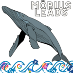 Mobius Leads Denver SEO & Web Design