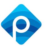 Panzi Digital Agency