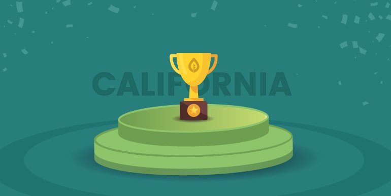 SEOblog.com Announces Best SEO Companies in California in 2019